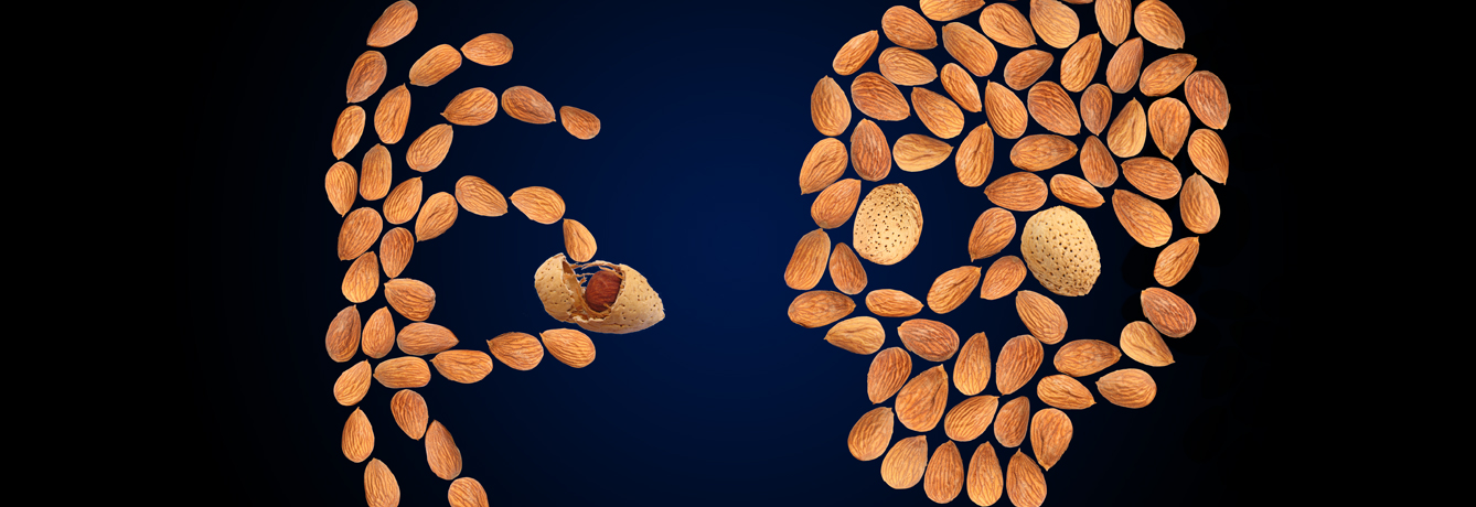 Almonds-vs-Osteoporosis